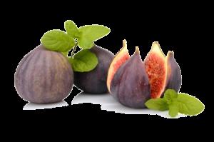 figs-rtf